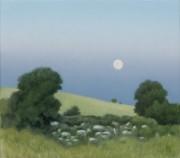 Moon over the Moor